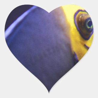 angelfish con gafas pegatina en forma de corazón