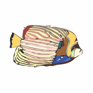 Angelfish Cutout