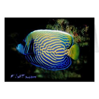 Angelfish de Emporer Tarjeta De Felicitación