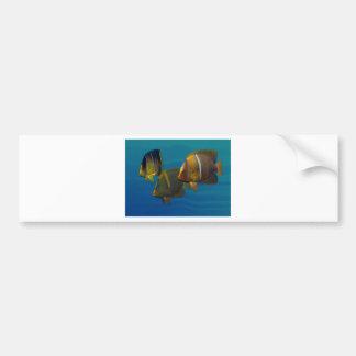 Angelfish de la natación pegatina para auto