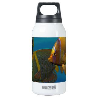 Angelfish de la natación