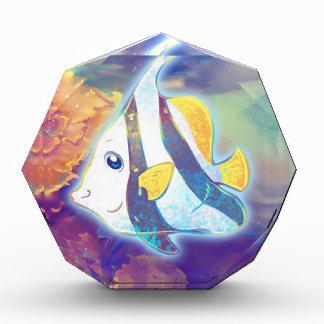 Angelfish lindo