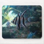 Angelfish Mousepad Alfombrillas De Ratones