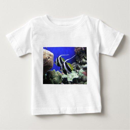 Angelfish Playera De Bebé
