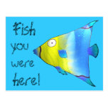 Angelfish Post Card