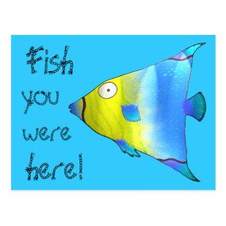 Angelfish Postcard