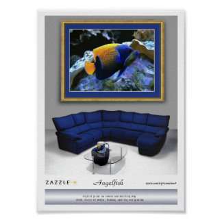 Angelfish Presentation print and mug