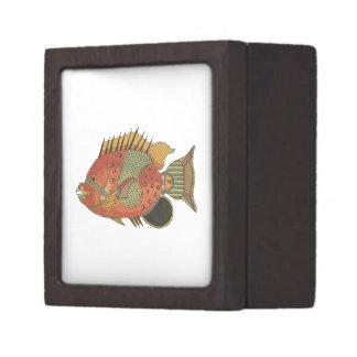 Angelfish rodeado azul cajas de joyas de calidad