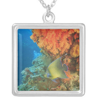 Angelfish swimming near orange soft coral, Bligh Silver Plated Necklace