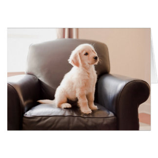 Angelic Golden Retriever Puppy Greeting Card
