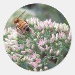 Angelic Honeybee Sticker