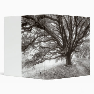 Angelic Oak Tree Binder
