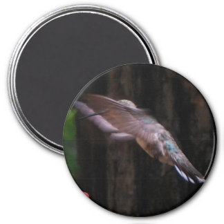 Angelic Wings Magnet