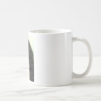 Angelina FANS Coffee Mugs