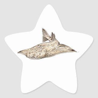 Angelote, shark angel star sticker