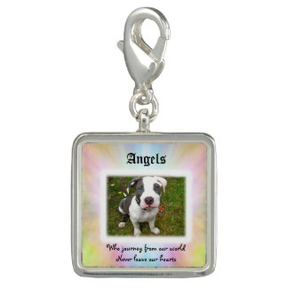 Angels Who Journey Pet Sympathy Charm