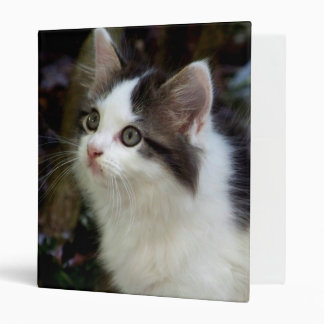 Angels With Whiskers (kitten) Binder