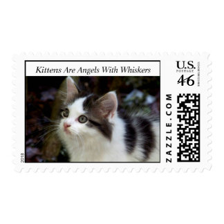 Angels With Whiskers kitten Stamps
