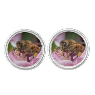 Angery Honey Bee On Pink Crabapple blossom Cufflinks