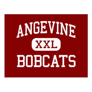 Angevine - Bobcats - Middle - Lafayette Colorado Postcard