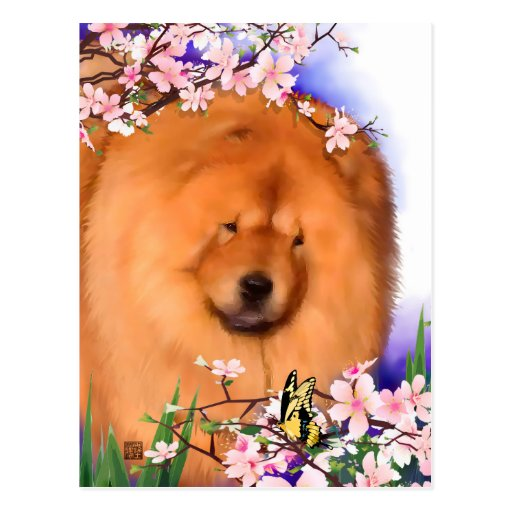 ANGIE heARTdog chow postcard