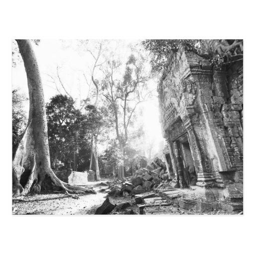 Angkor Cambodia, Details Ta Prohm Postcards