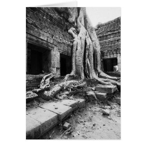 Angkor Cambodia, Ta Prohm Tree Greeting Card