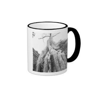 Angkor Cambodia Tree Ta Prohm Coffee Mugs