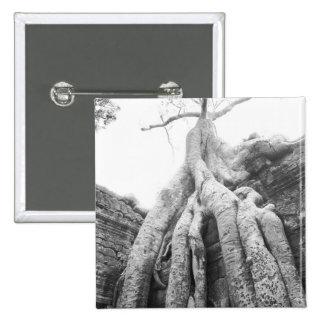 Angkor Cambodia, Tree Ta Prohm Pinback Button