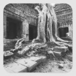 Angkor Camboya, árbol de TA Prohm Pegatinas Cuadradas Personalizadas