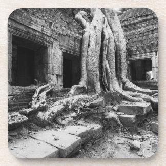 Angkor Camboya, árbol de TA Prohm Posavasos De Bebida