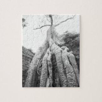 Angkor Camboya, árbol TA Prohm Rompecabeza Con Fotos