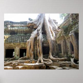 Angkor Tree Poster