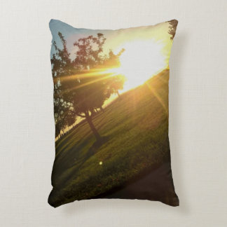 Angle Of The Wind Accent Pillow