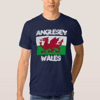 Anglesey, País de Gales con la bandera Galés Playera