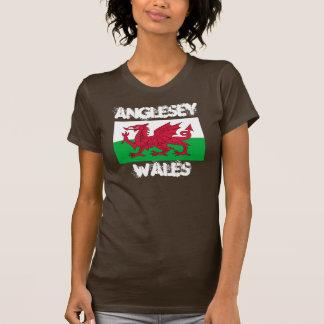 Anglesey, País de Gales con la bandera Galés Playeras