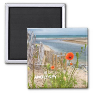 Beach Themed Anglesey Wales Scenic View Beach And Wild Poppies Magnet