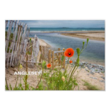 Beach Themed Anglesey Wales Scenic View Beach And Wild Poppies Poster