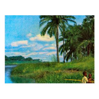 Angola, boys fishing in the upper river Cuanza Postcard