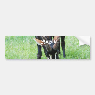 Angola Sable Antelope Bumper Sticker