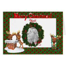 Angora Goat Christmas Card