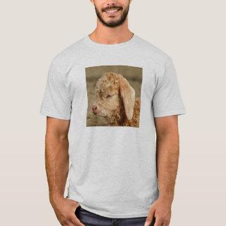 Angora Goat Kid - Adult Light T-shirt
