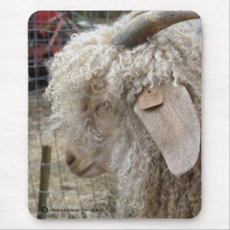 ANGORA GOAT - REDFORD MOUSE PAD