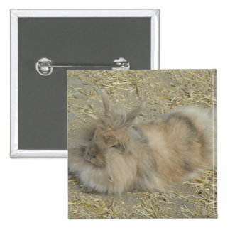 Angora rabbit pin