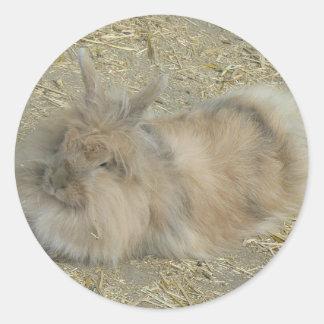 Angora rabbit round stickers