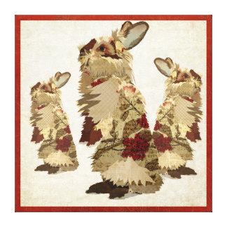 Angora Rabbits Canvas Canvas Print