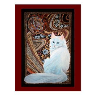 Angora turco blanco postal