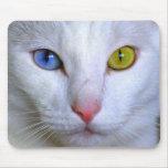 Angora turco Mousepad Alfombrilla De Raton