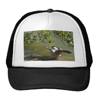 Angry Bird 3 Trucker Hat