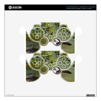 Angry Bird 3 Skin For PS3 Controller